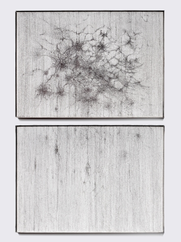untitled, archival ink on canvas, mettalic frame, diptych, 70 x 100 cm , 2018