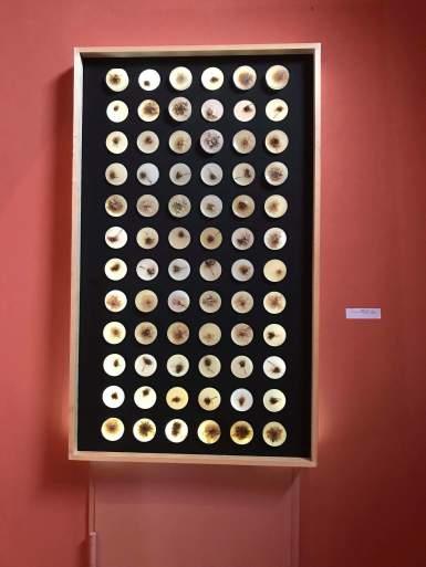 Σημεία 2018,160Χ90 εκ. κερί λουλούδια ξύλινος πλαίσιο